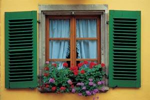window.00.jpg